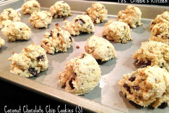 Coconut Chocolate Chip Cookies (S)