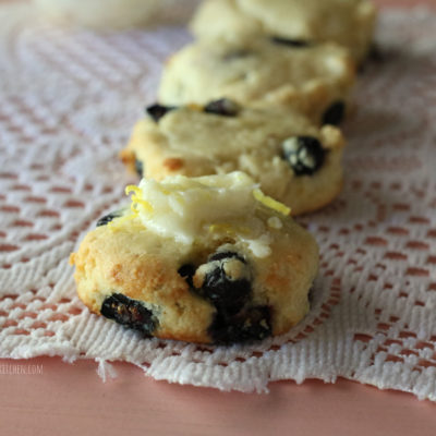 Blueberry Tea Biscuits (thms, low carb, sugar free)